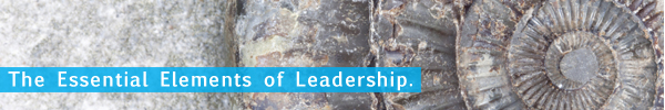 Structure of Authentic Leadership