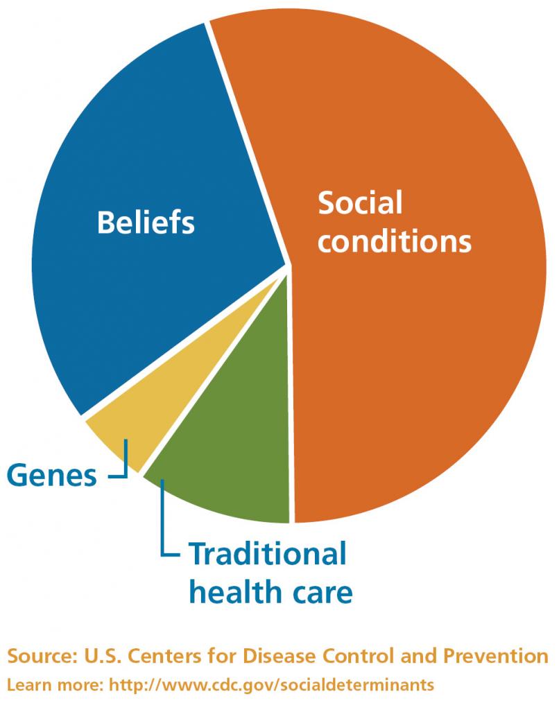 Health factors chart